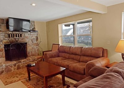 Cabin 31- Lower Level Living Room